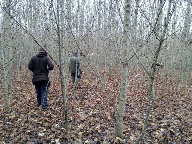 Lagerleben im frostigen Wald