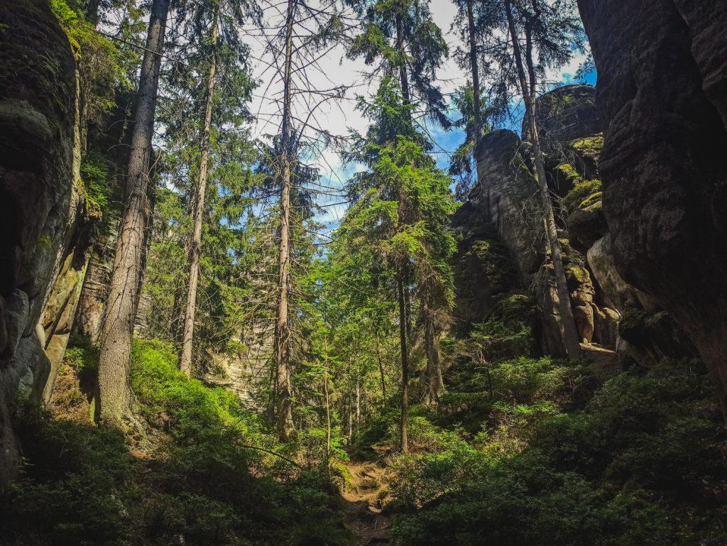 wanderung-adersbacher-felsenstadt-adrspach